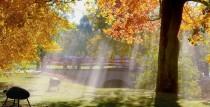Zelta rudens Ventspilī