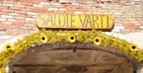 """24. augustā Saldu devīto reizi pieskandinās Starptautiskais tautas muzikantu festivāls """"Saldie vārti"""""""