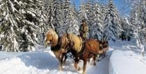 Ziemas pasaku baudījums Jura staļļos Grobiņā