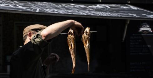 Ventspils novada Užavā notiks zivju tirgus