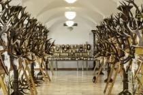 Pēdējo trīs gadu izcilākās medību trofejas Jaunmoku pilī