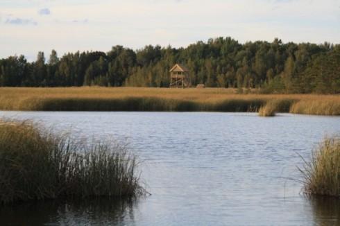 Kaņiera ezera putnu vērošanas tornis un dabas taka