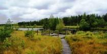 Pēterezera dabas taka